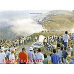 Lancia Rally 037 - Antonio Biasioli